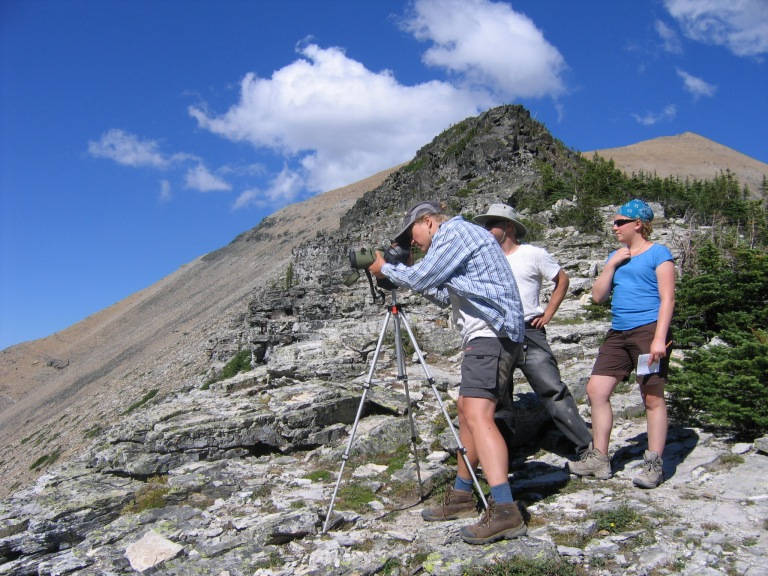 Scanning_the_cliffs_for_mountain_goats_(Citizen_Science)_(4427412443).jpg